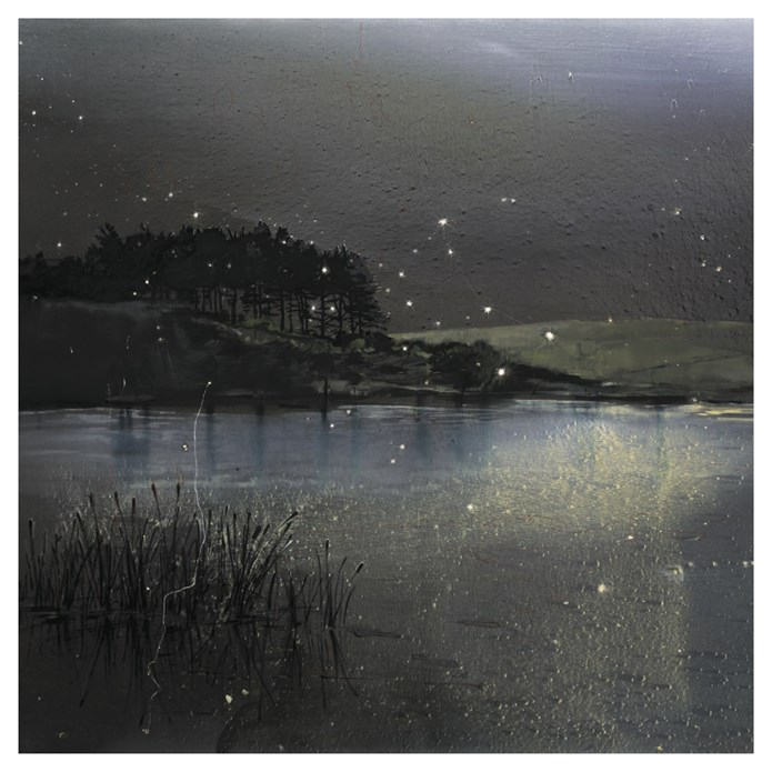 Elizabeth Magill: Recent Paintings: B.Info card
