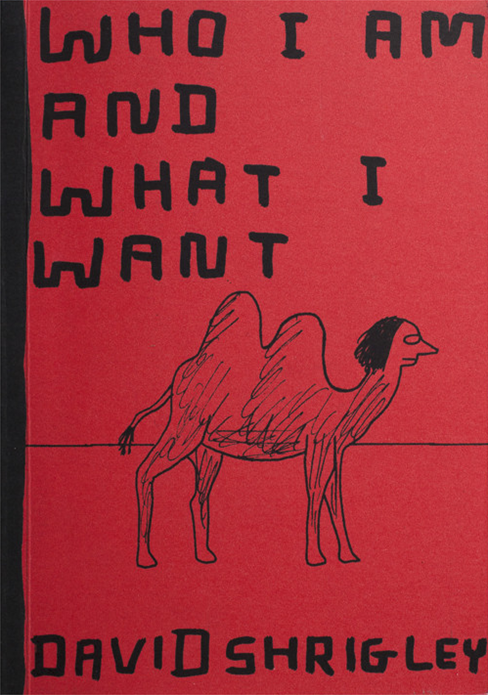 David Shrigley: Who I Am and What I Want