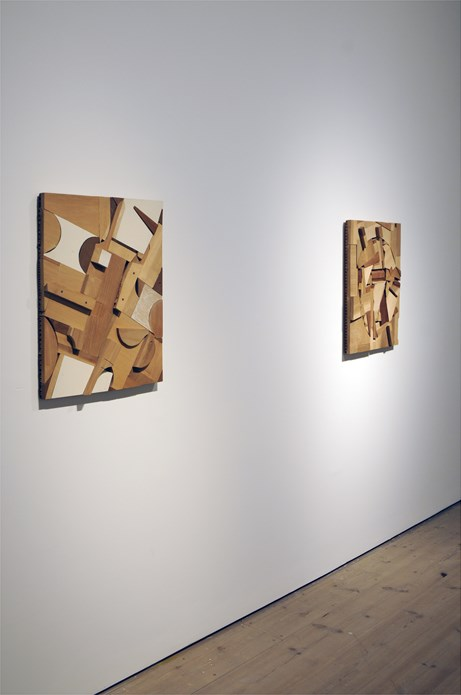 Double Agent: Installation shot (06) - (Donelle Woolford)