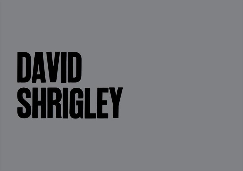 David Shrigley: B.Info card