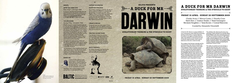 A Duck for Mr Darwin: Interpretation Guide