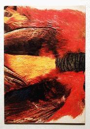 Susan Weil: Bird Songs Heartbeat
