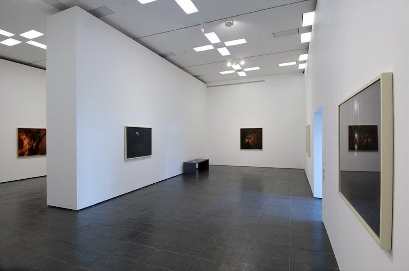 Fiona Crisp: Subterrania: Exhibition Image (04)