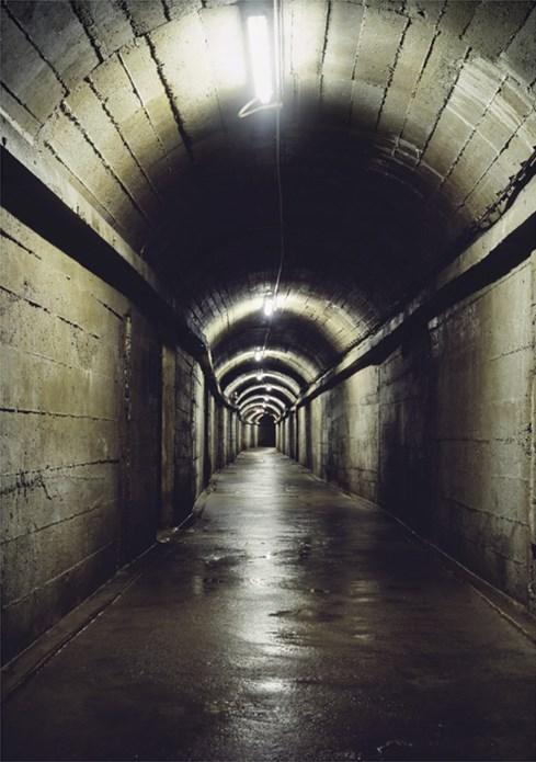 Fiona Crisp: Subterrania: Promotional Postcard
