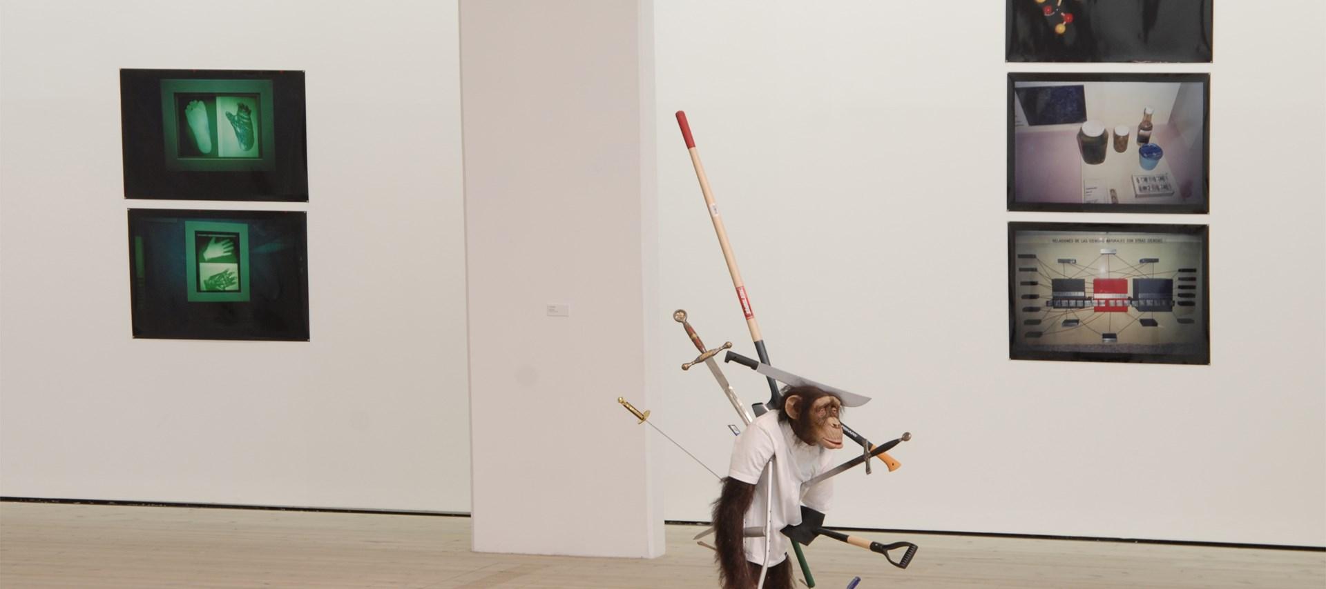 Freak Show - An Unnatural History: Installation shot by Colin Davison