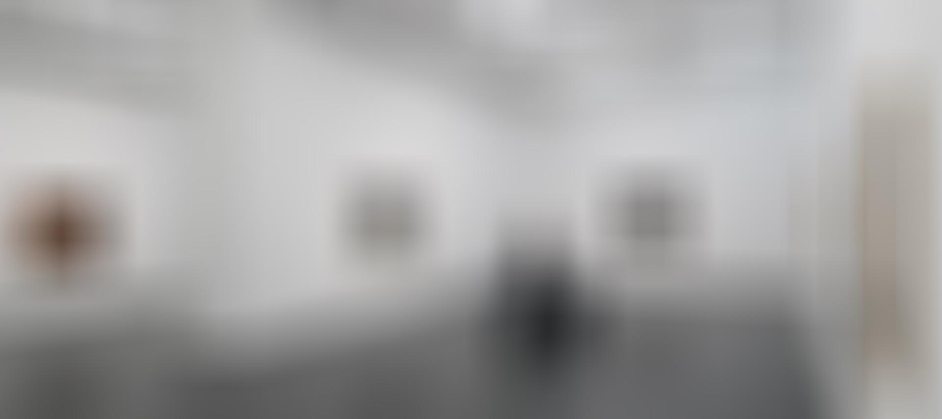 Fiona Crisp: Subterrania: Exhibition Image (01)