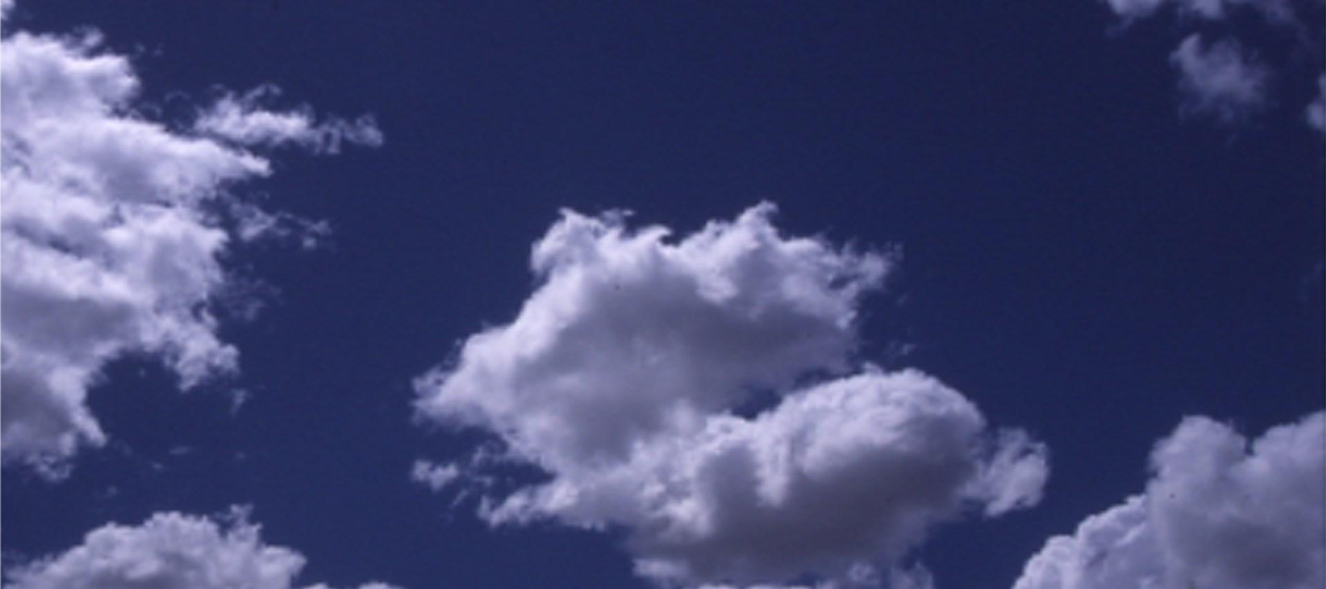 Alec Finlay: Participations -  Wind blown cloud