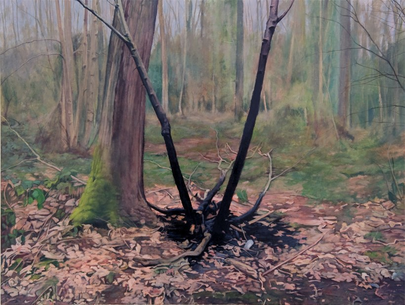 Turner Prize 2011: George Shaw: Exhibition Image (02)