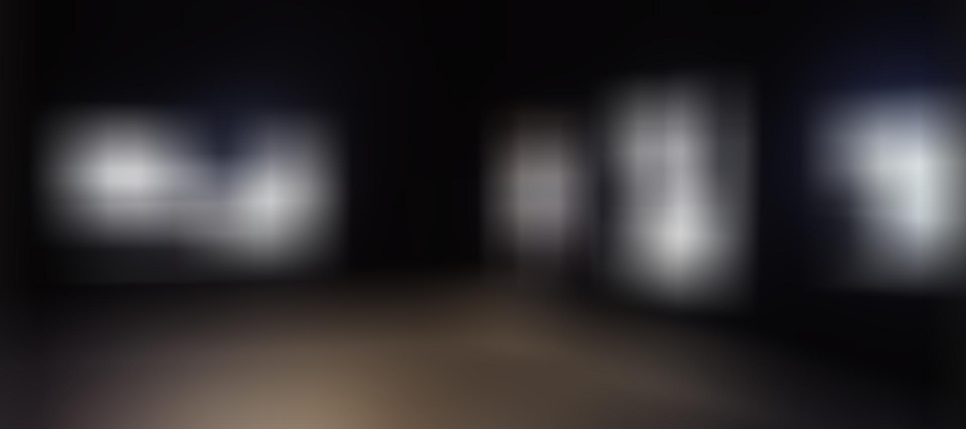 Carol Rama: Retrospective: Exhibition Image (02)