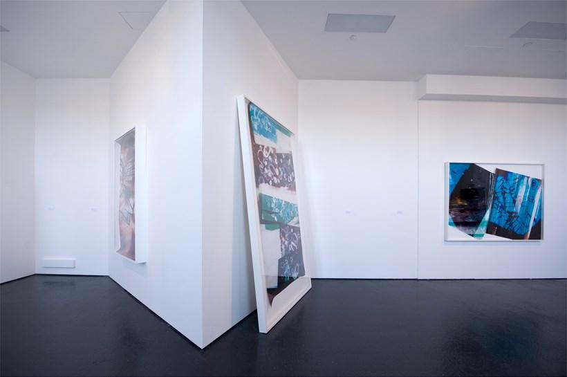 Mariah Robertson: Exhibition Image (01)