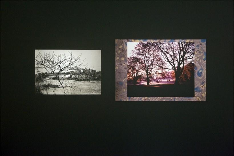 Tris Vonna-Michell: Ulterior Vistas: Installation Image (01)