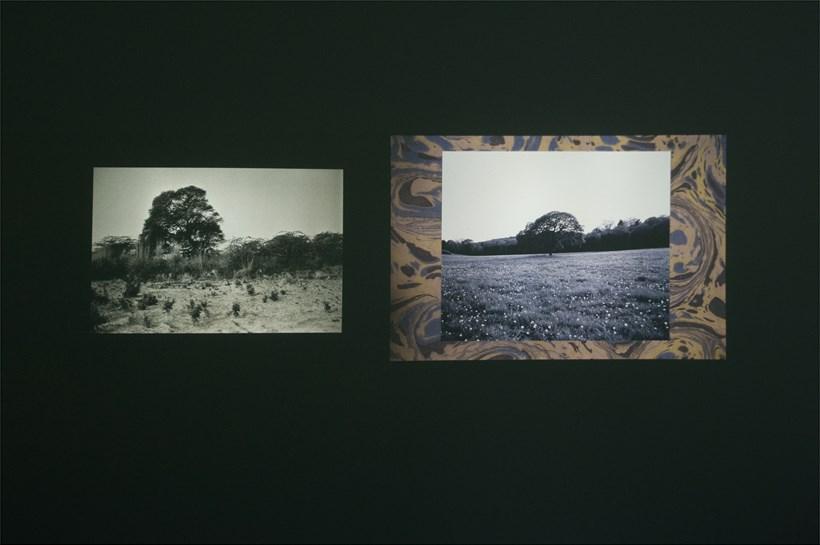 Tris Vonna-Michell: Ulterior Vistas: Installation Image (02)