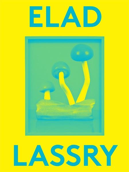 Elad Lassry: 2000 Words
