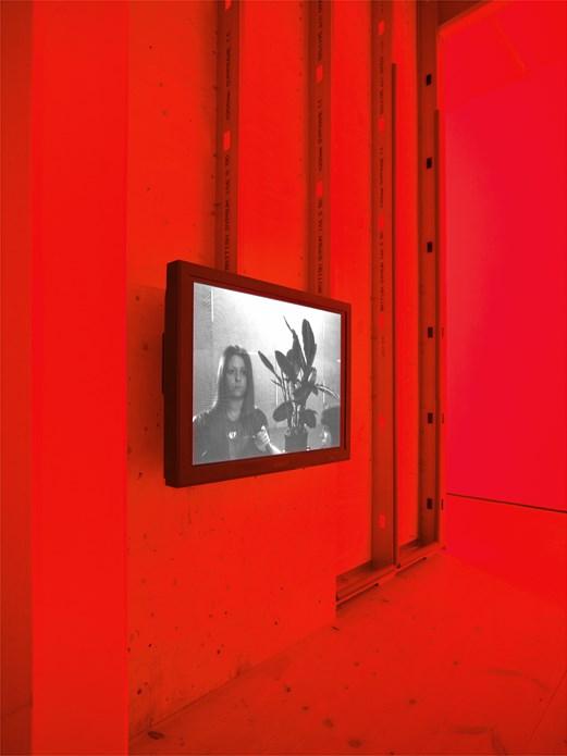 Gail Pickering: Mirror Speech: Installation image (03)