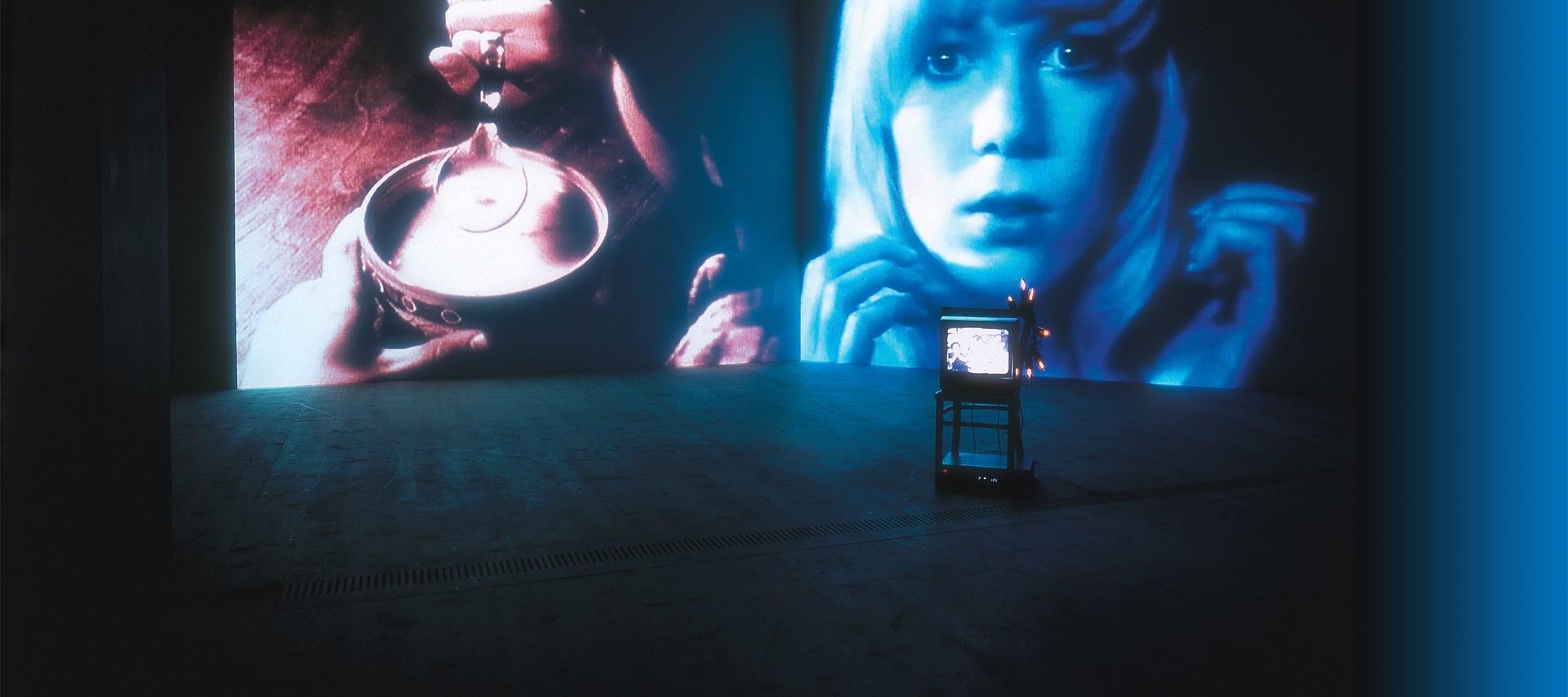 Susan Hiller: Recall 1969-2004: Wild Talents: Exhibition Shot (04)