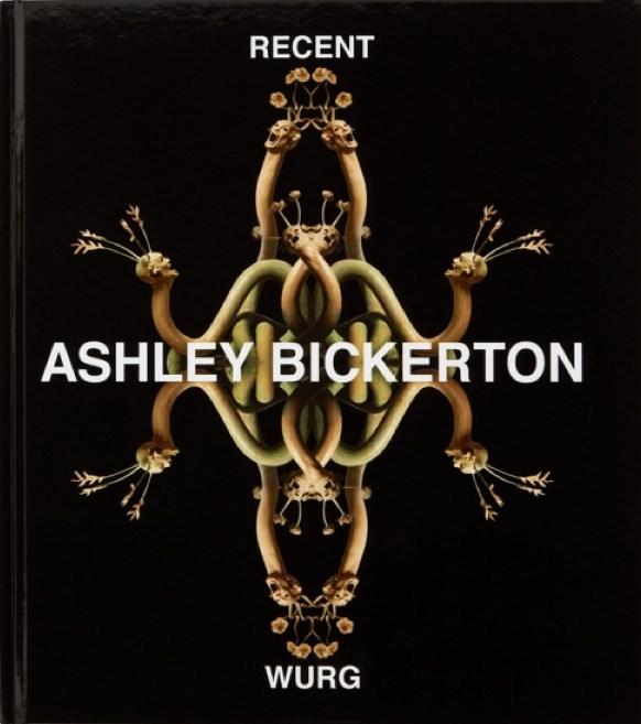 Ashley Bickerton: Recent Wurg