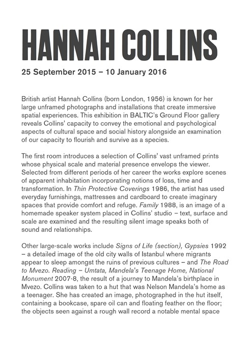 Hannah Collins: Interpretation Guide