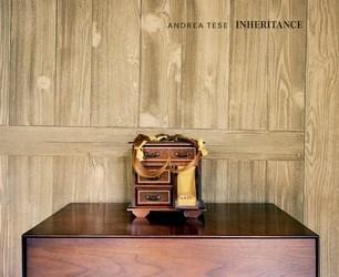 Andrea Tese: Inheritance