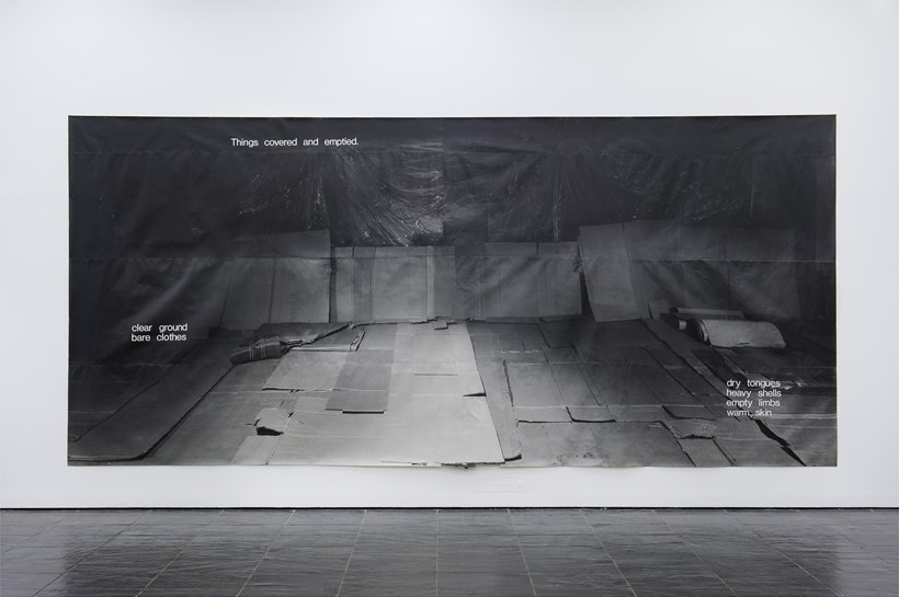 Hannah Collins: Thin Protective Coverings, 1986