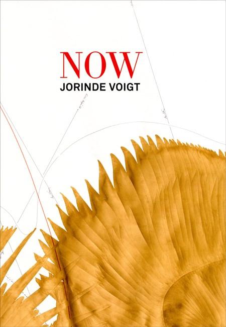 Jorinde Voigt (Bilingual Edition)