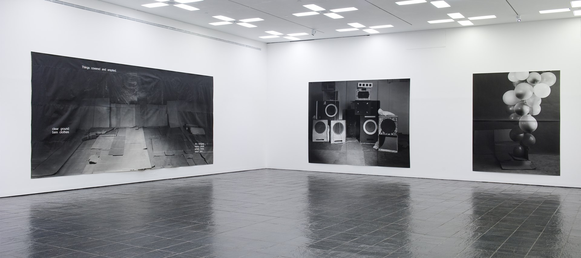 Hannah Collins_GF_Installation View_b.jpg