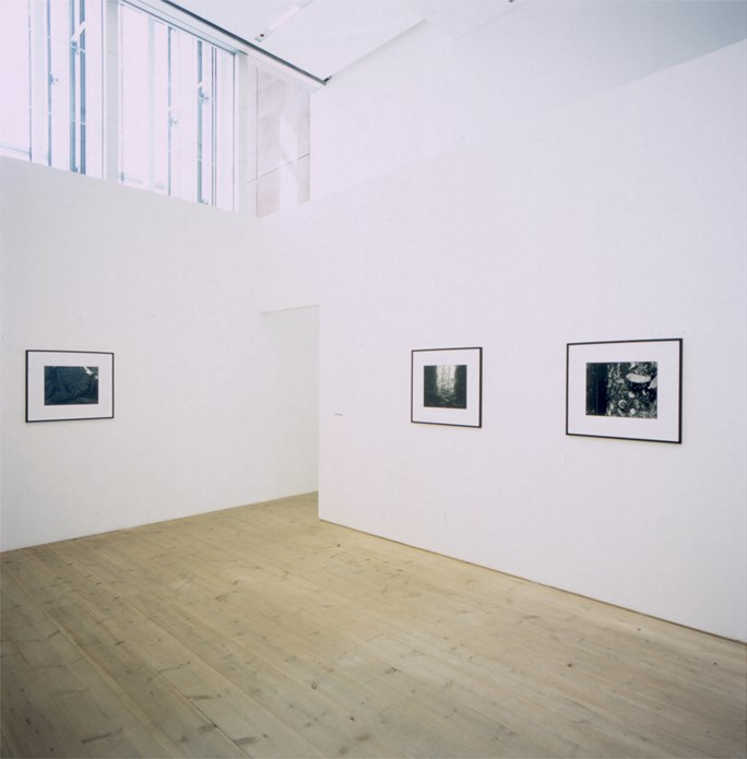 The Cathedral: Installation view (04)