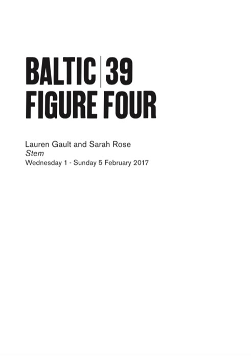 BALTIC 39 | FIGURE FOUR: Week 3: Lauren Gault and Sarah Rose