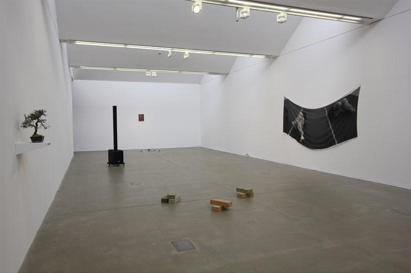 Nicola Singh: Installation View (04)