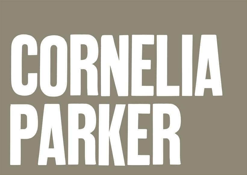 Cornelia Parker: Doubtful Sound: Learning Resource