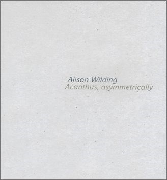 Alison Wilding: Acanthus, asymmetrically