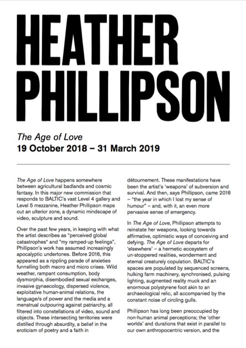 Heather Phillipson: The Age of Love: Interpretation Guide