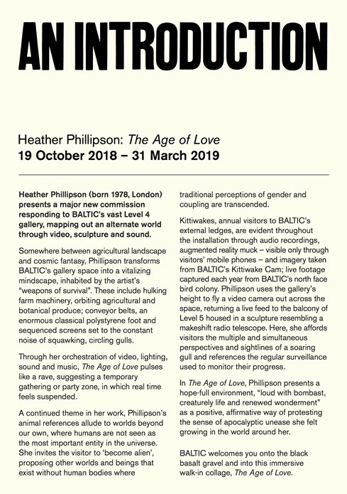 Heather Phillipson: The Age of Love: An Introduction