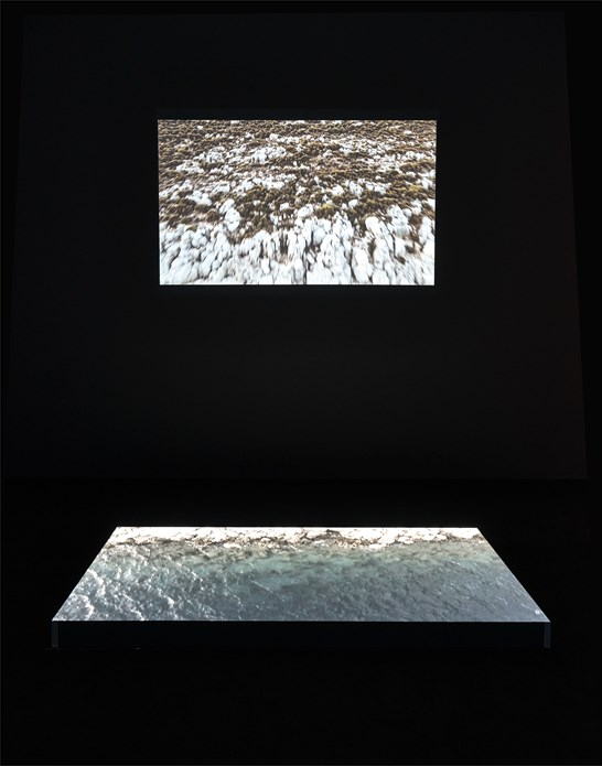 Disappearance at Sea - Mare Nostrum: Installation View (06)
