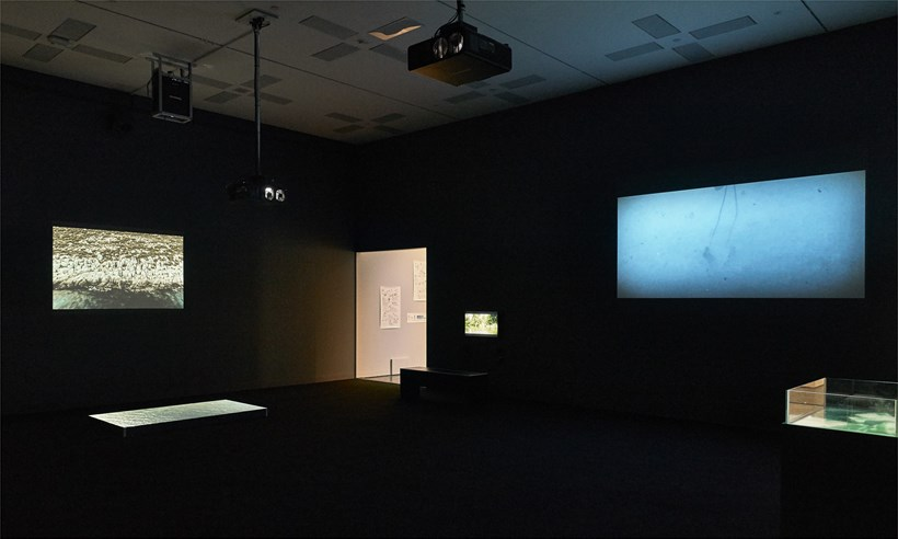 Disappearance at Sea - Mare Nostrum: Installation View (08)