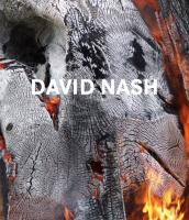 David Nash: Wood. Metal. Pigment