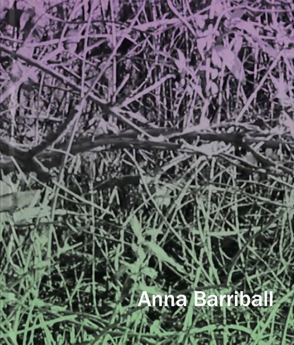 Anna Barriball