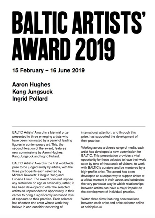 BALTIC Artists' Award 2019: Interpretation Guide