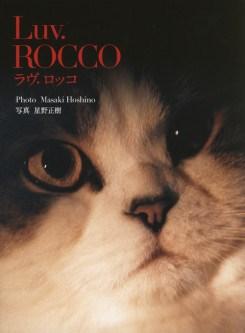Masaki Hoshino: Luv. Rocco