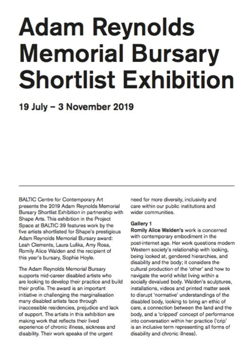 Adam Reynolds Memorial Bursary Shortlist Exhibition: Interpretation Guide