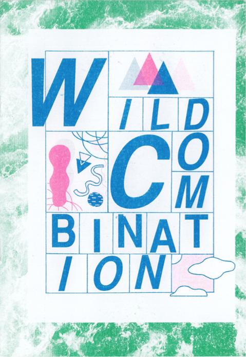Cj Reay: Wild Combinations