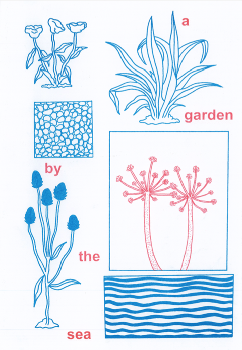 Cj Reay: a garden by the sea