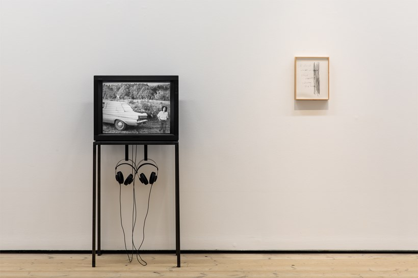 Animalesque / Art Across Species and Beings: Installation View (10)