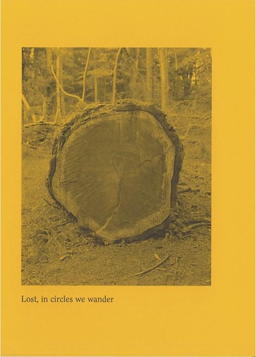 Alex Catt: Lost, in circles we wander