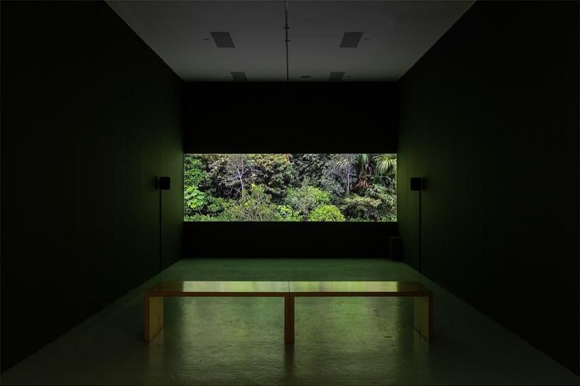 Abel Rodríguez: Installation view (30)