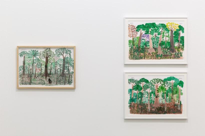 Abel Rodríguez: Installation view (11)