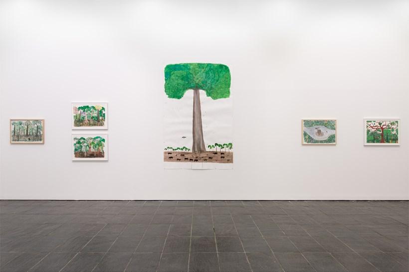 Abel Rodríguez: Installation view (06)