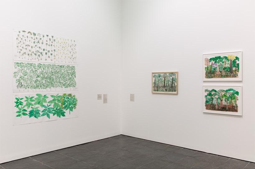 Abel Rodríguez: Installation view (05)