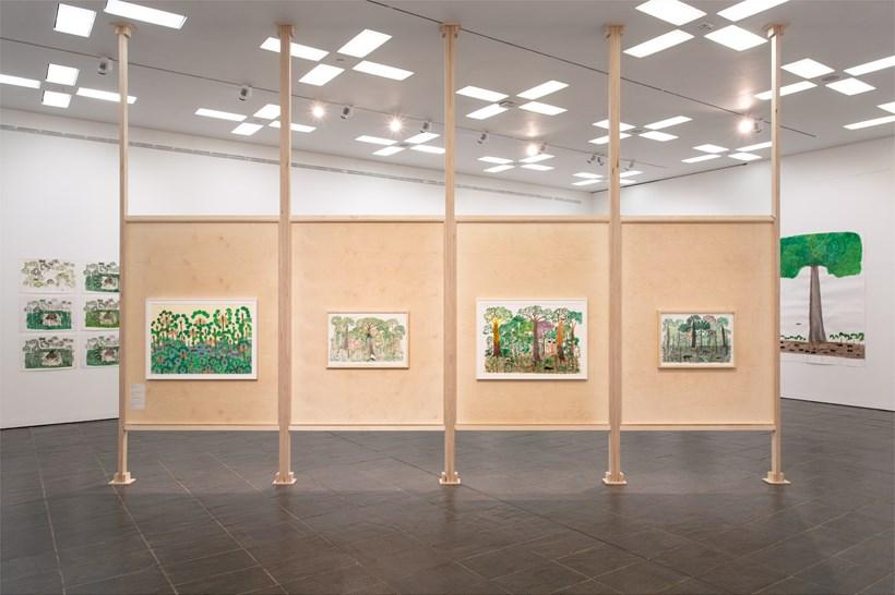 Abel Rodríguez: Installation view (03)
