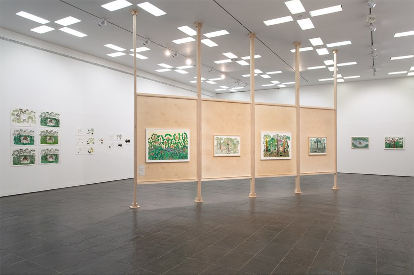Abel Rodríguez: Exhibition Views