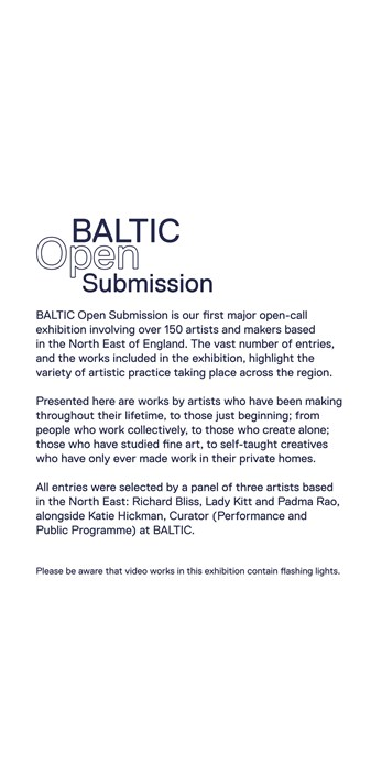 BALTIC Open Submission: Text Panel